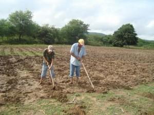 agricultorumbuzeirense
