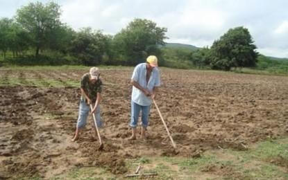 Inclusão Produtiva beneficia agricultores do Cariri