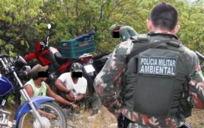 Polícia Ambiental prende 11 em Sumé e Monteiro por caça à arribaçãs