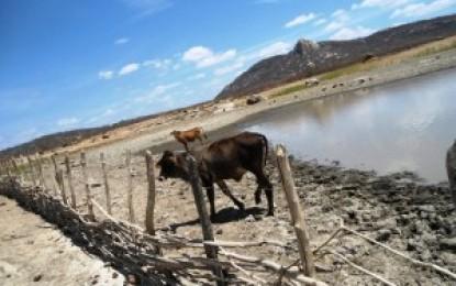Barragens do Brejo paraibano não receberam recarga hídrica, afirma a Aesa