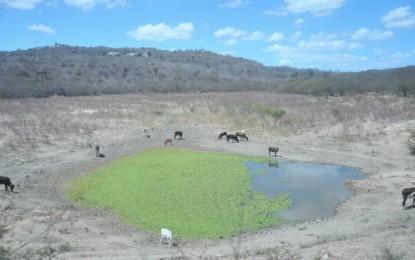 Dados da Nasa mostram que seca no Brasil é pior do que se pensava